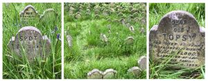 Hyde Park Pet Cemetery